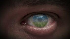El cielo en los ojos stock de ilustración