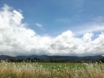 el cielo en sus yemas del dedo fotografía de archivo libre de regalías