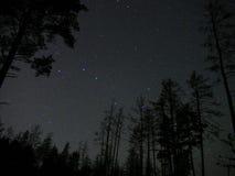 El cielo nocturno protagoniza la atmósfera del bosque de la constelación del cazo grande imagenes de archivo