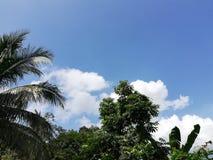 El cielo reservado fotografía de archivo libre de regalías