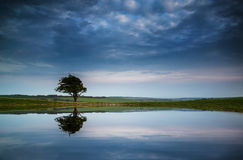 El cielo tempestuoso dramático reflejó en paisaje del campo de la charca del rocío Fotos de archivo
