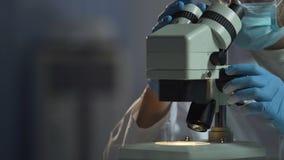 El científico ajusta el microscopio para ver el compuesto molecular de la célula, microbiología almacen de metraje de vídeo