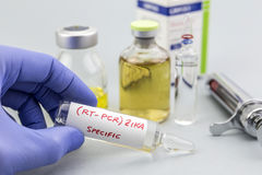 El científico con los guantes azules del látex sostiene los frascos de virus de ZIKA Imagen de archivo