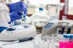 El científico de sexo femenino joven trabaja en laboratorio moderno de la química/de biología fotografía de archivo