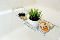 El cierre del balneario del cuarto de baño instaló con el pote de la planta verde Imagen de archivo libre de regalías