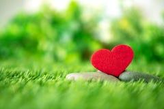 El cierre encima de la forma roja del corazón en la hierba fresca verde, buena relaja y ama el símbolo de sensación romántico, fo imagenes de archivo