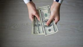 El cierre encima de las manos masculinas del FE cuenta cientos billetes de dólar en el fondo gris almacen de metraje de vídeo