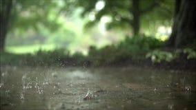 El cierre espectacular de la cámara lenta encima del tiro satisfactorio constante de la lluvia del aguacero cae caer en el camino almacen de metraje de vídeo