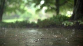 El cierre hermoso de la cámara lenta encima del tiro satisfactorio constante de la lluvia del aguacero cae caer en el camino conc almacen de metraje de vídeo