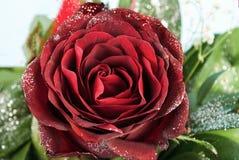 El cierre para arriba adornó la flor y al papeleo color de rosa en fondo azul Imagen de archivo libre de regalías