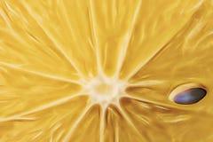 El cierre para arriba cortó el limón en piso ilustración del vector