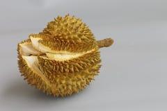 El cierre para arriba de un Durian Foto de archivo libre de regalías