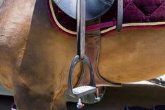 El cierre para arriba del estribo en el caballo durante la competencia hace juego Imágenes de archivo libres de regalías