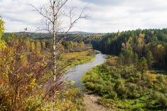 El ciervo de la reserva fluye ural Fotos de archivo