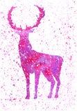 El ciervo púrpura de la acuarela en un fondo blanco con púrpura salpica Ciervos del invierno Foto de archivo