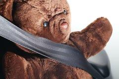 El cinturón de seguridad en la acción de la cerradura con la muñeca del oso Imagen de archivo