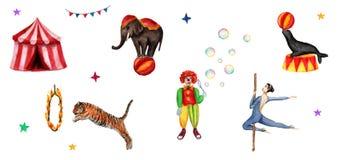 El circo fijó elementos, el elefante, el payaso, el sello, el tigre, la tienda, banderas, burbujas de jabón, el anillo del fuego  ilustración del vector