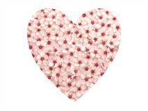 El ciruelo florece el corazón II Imagenes de archivo
