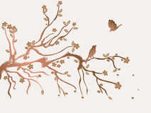 El ciruelo florece el flor Imagen de archivo