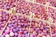 El ciruelo fresco da fruto en las cajas de madera para la venta en el mercado fotografía de archivo