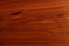 El Ciruelo-árbol. Imagen de archivo