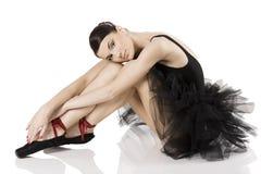 El cisne negro Foto de archivo libre de regalías