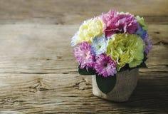 El clavel y el crisantemo florece en pote en la madera vieja Imágenes de archivo libres de regalías