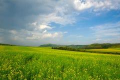 El cloudscape hermoso en el prado Imagen de archivo libre de regalías