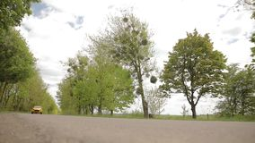 El coche amarillo-naranja de los deportes se mueve a lo largo de un callejón hermoso con los árboles y los neumáticos discretos d metrajes