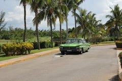 El coche americano del vintage verde monta a lo largo de una fila de palmeras altas imagen de archivo