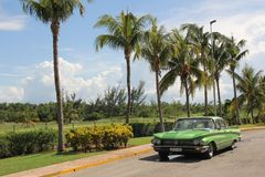 El coche americano del vintage verde monta a lo largo de una fila de palmeras altas foto de archivo