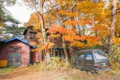 El coche delante de la casa abandonada en el color de los cambios del bosque de la selva foto de archivo