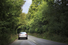El coche va en el camino en el túnel de árboles Imagenes de archivo