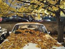 El coche viejo cubierto con amarillo se va, las hojas que caen Imágenes de archivo libres de regalías