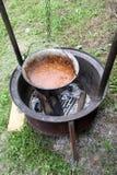 El cocinar al aire libre Imagen de archivo