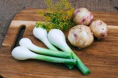 El cocinar con las verduras frescas Foto de archivo