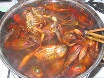 El cocinar de cangrejos Imagen de archivo libre de regalías