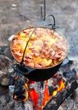 El cocinar de la hoguera Foto de archivo libre de regalías