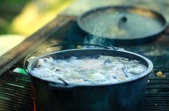El cocinar de la sopa de los pescados imagen de archivo libre de regalías