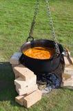 El cocinar del alimento biológico Imagen de archivo