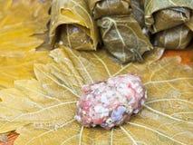 El cocinar del dolma de las hojas de la vid, pica y arroz Imágenes de archivo libres de regalías