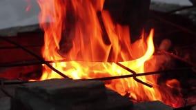 El cocinar en el fuego cacerola sobre una llama abierta almacen de video