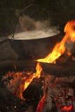El cocinar en un hongo en la naturaleza Foto de archivo libre de regalías