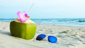 El coco en día de fiesta Imagenes de archivo