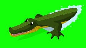 El cocodrilo ataca a Front View Chroma ilustración del vector