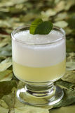 El coctel peruano llamó a Coca Sour Foto de archivo