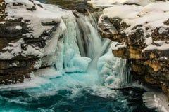 El codo cae en cubiertas del invierno Imagen de archivo libre de regalías