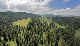 EL Col. du Marchairuz 1447 m Ist ein hoher Gebirgspass in Jura Mountains im Kanton Waadt in der Schweiz Lizenzfreie Stockfotografie