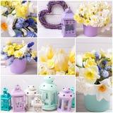 El collage de las fotos con los narcisos y los tulipanes amarillos florece, Fotografía de archivo