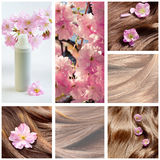 Collage de las imágenes de la belleza del cuidado del cabello y del pelo con las flores Foto de archivo